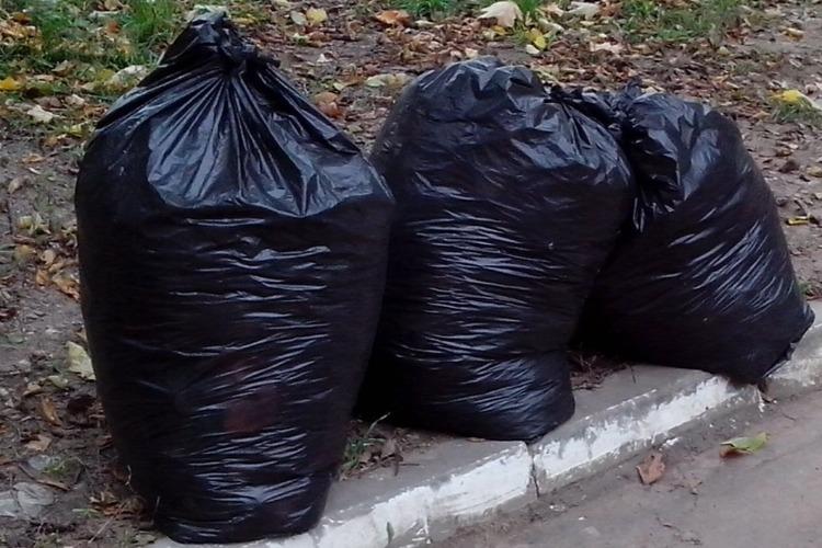 Без талонов никуда. Коммунальщики не могут вывезти мусор из Балакова