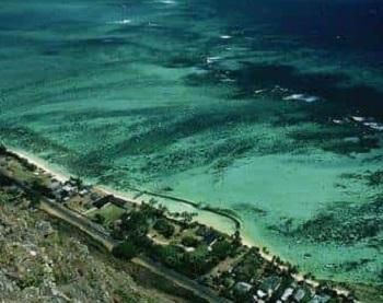 Ученые: Мексиканский залив превратится в самую большую мертвую зону на Земле