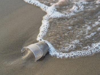 Медики: западное побережье США превратилось в унитаз, вода содержит фекалии